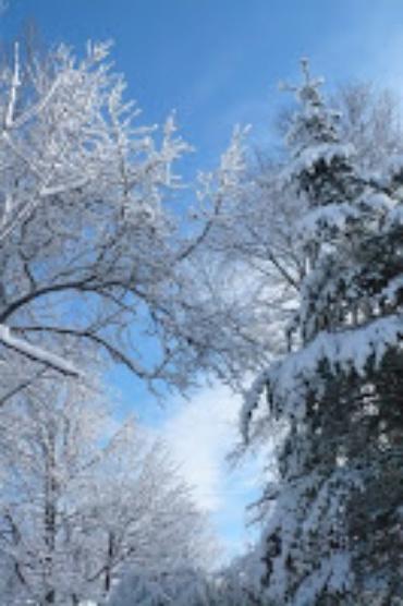"""1 week """"post""""–snow"""