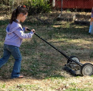 GARDEN: Ingenuity on the Home Front