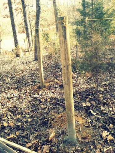 Homesteading: the Fence