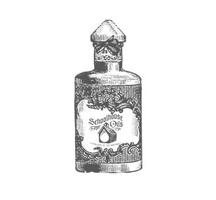 Frankincense Oil Essential Oils