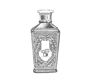 Melaeuca Oil Essential Oils