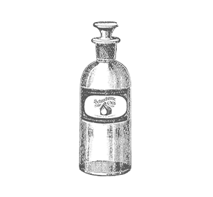 Peppermint Oil Essential Oils