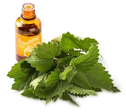 Essential Oils Herb